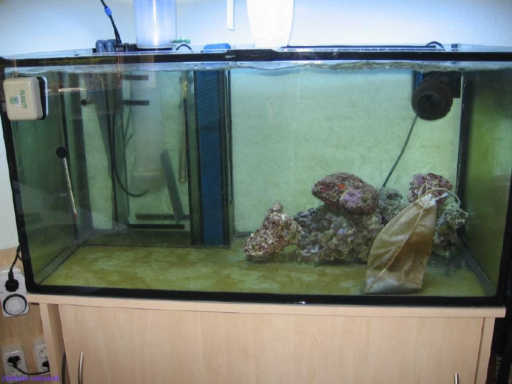 leeres aquarium reinigen